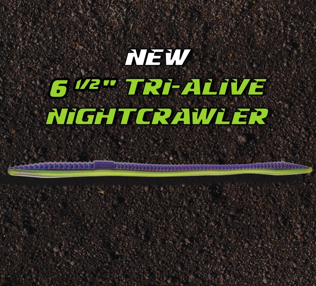 Mister Twister Soft Plastic Lures - Shop the Original Curly