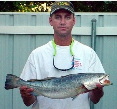 Photo of Trout Caught by Capt. Brian with Mister Twister  in Louisiana