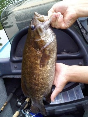 Photo of Bass Caught by Trey  with Mister Twister 3
