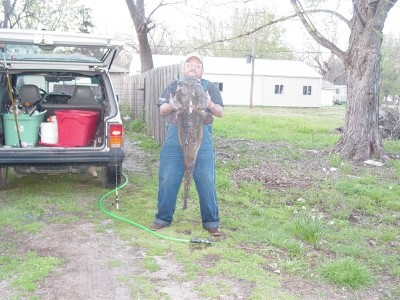 Photo of Catfish Caught by James with Mister Twister Sassy Shad® in Kansas