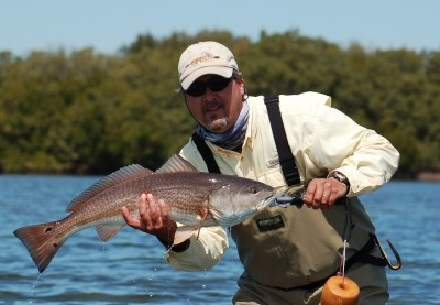Photo of Redfish Caught by Bill  with Mister Twister Exude™ D.A.R.T. in United States - Mister Twister