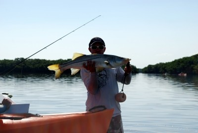 Photo of Snook Caught by John with Mister Twister Exude™ D.A.R.T. in Florida