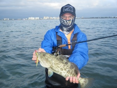 Photo of Grouper Caught by David Amos with Mister Twister Exude™ D.A.R.T. in Florida - Mister Twister