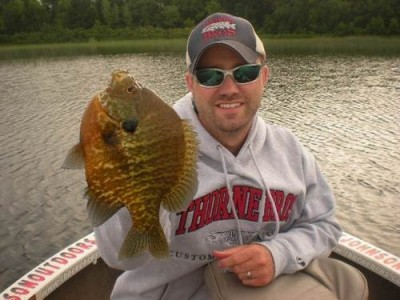 Photo of Matt's 6/17/11 Sunfish (shellcracker)