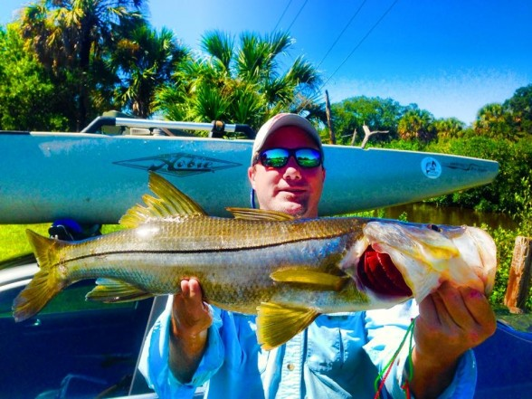 Photo of Snook Caught by Matt with Mister Twister Exude™ RT Slug in Florida - Mister Twister