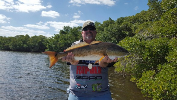 Photo of Redfish Caught by Eric with Mister Twister Exude™ 4¼